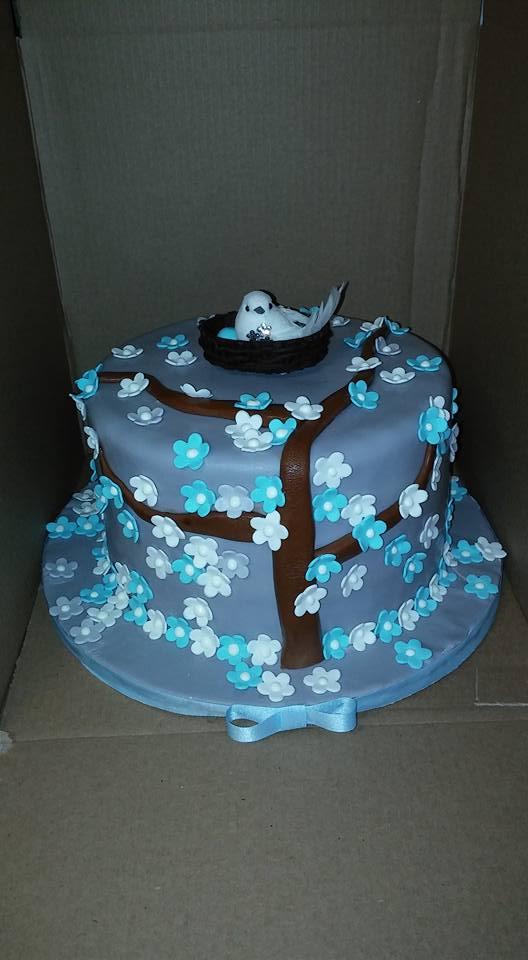 Baby Birdie Cake